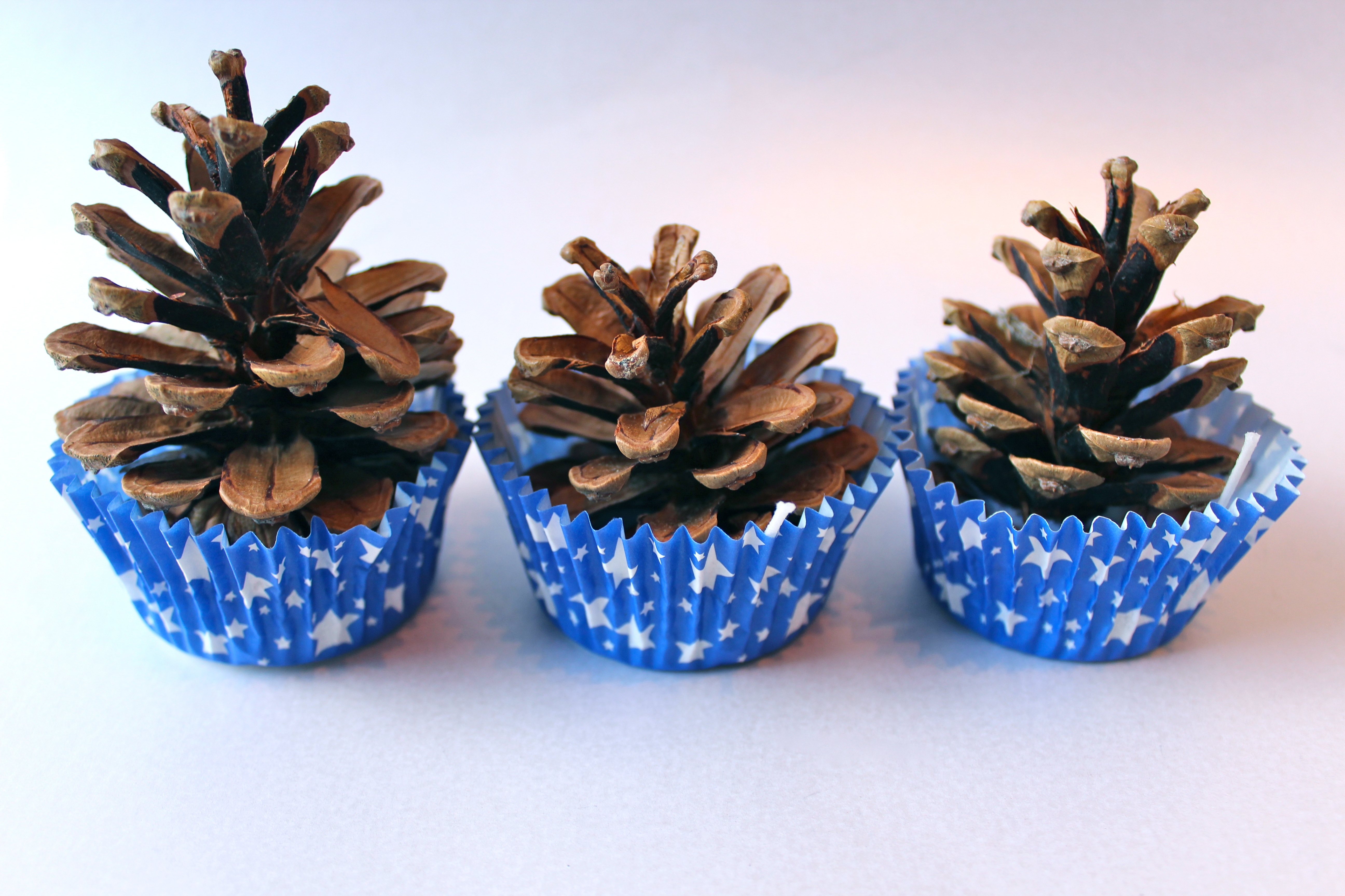 homemade pinecone firelighters. Black Bedroom Furniture Sets. Home Design Ideas