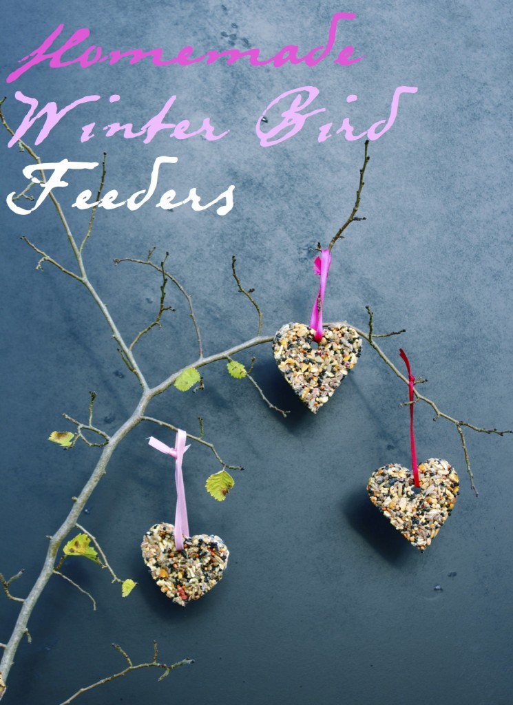 DIY Bird feeders from katescreativespace