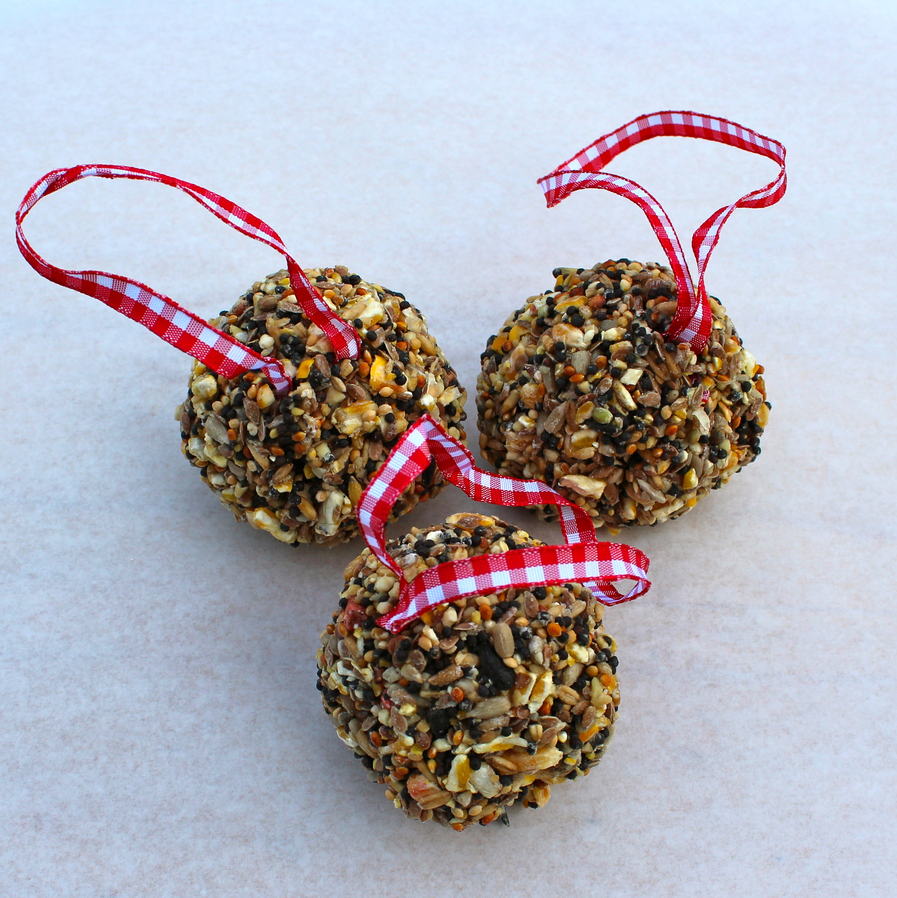 how to make wild bird seed balls