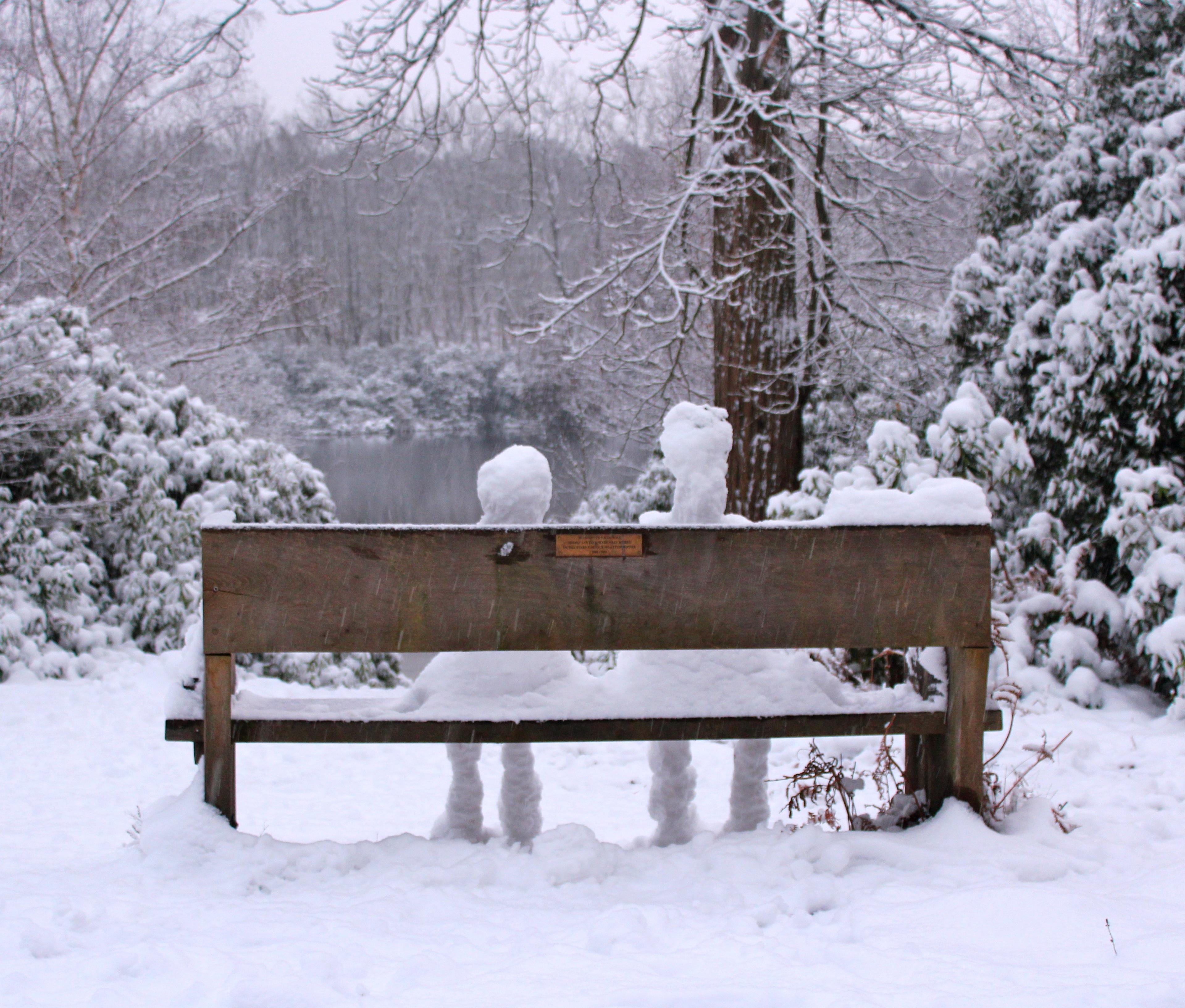 a snowy romance