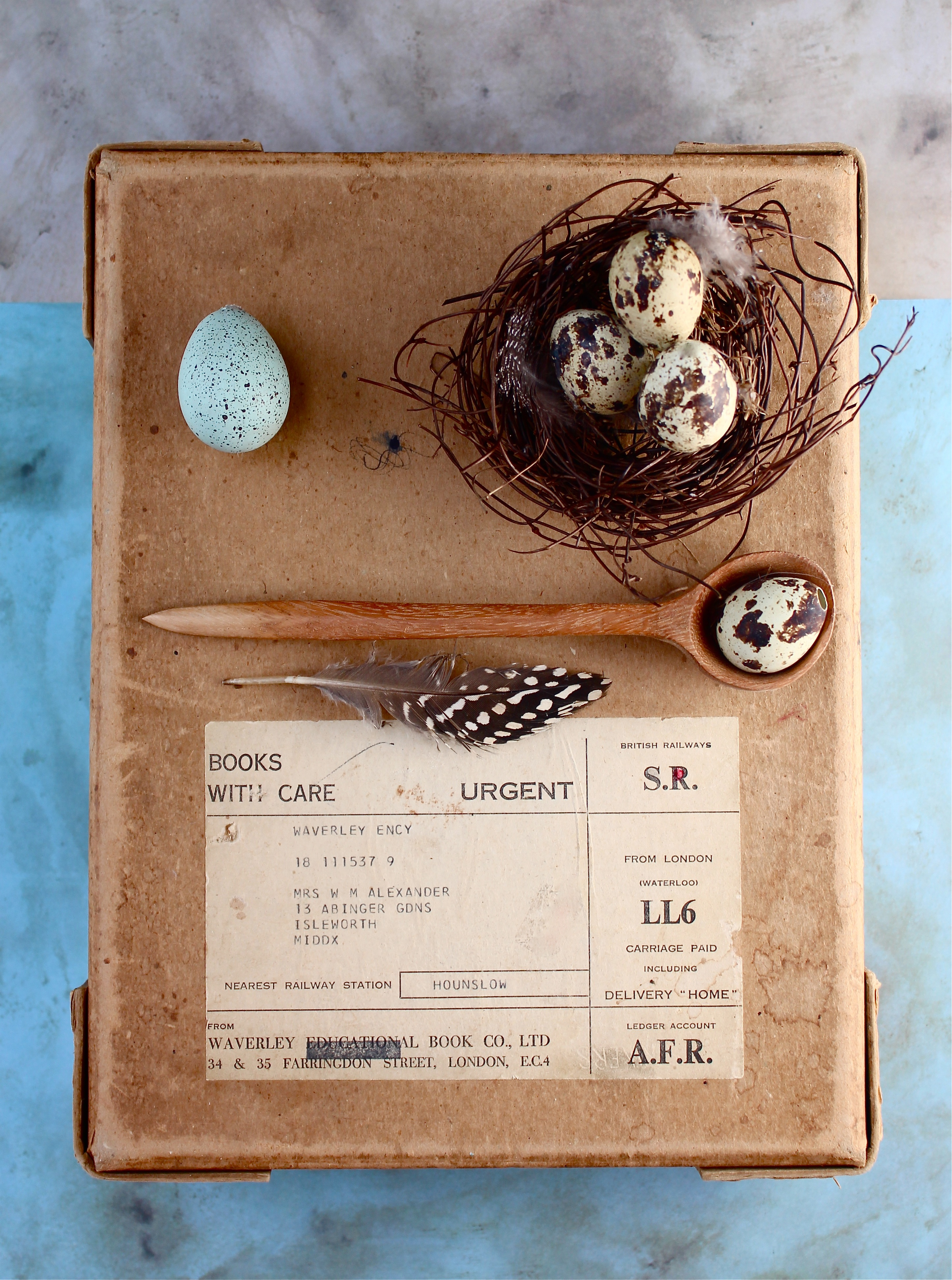 bird nest DIY 2
