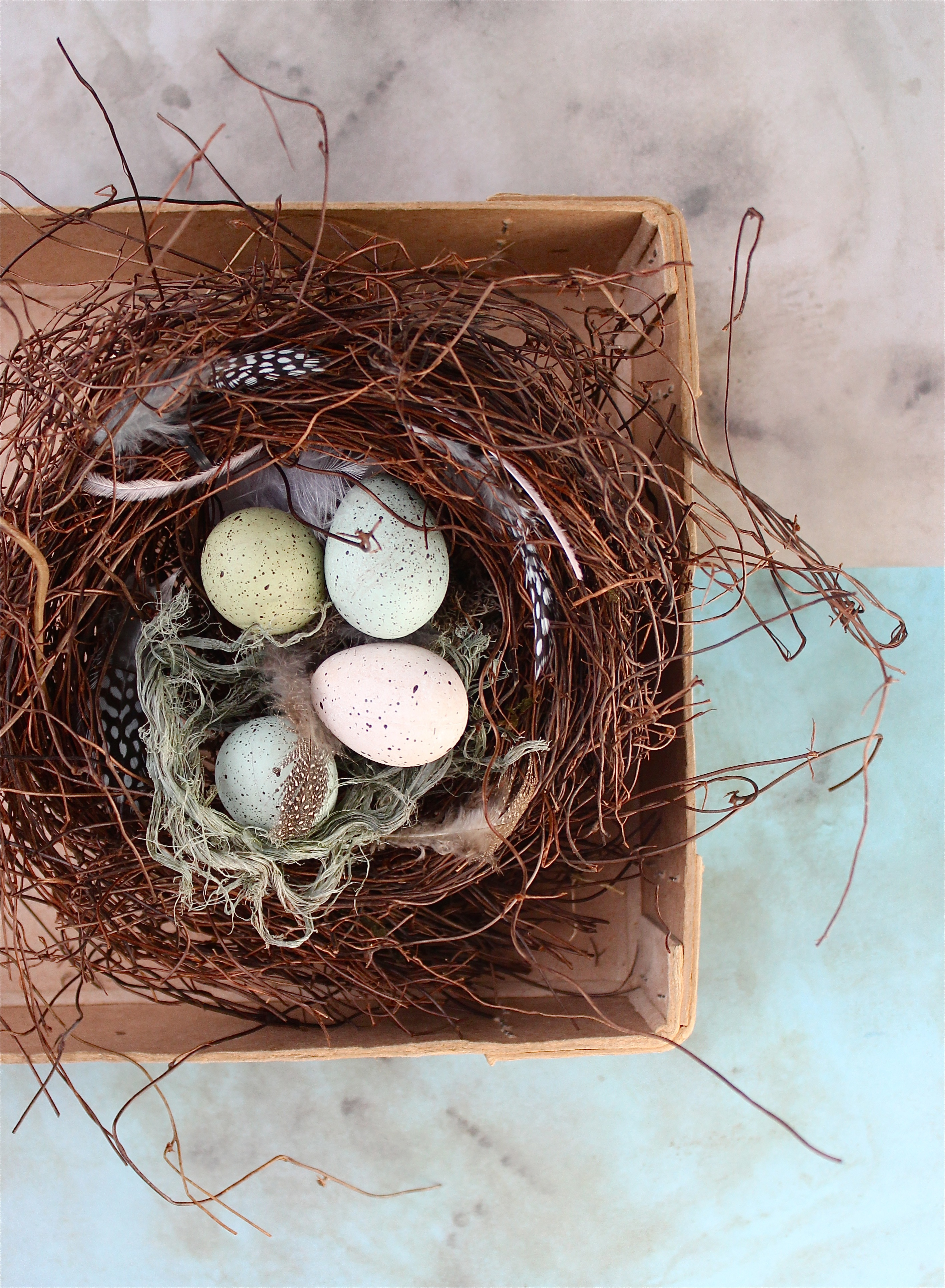 DIY birds nest project