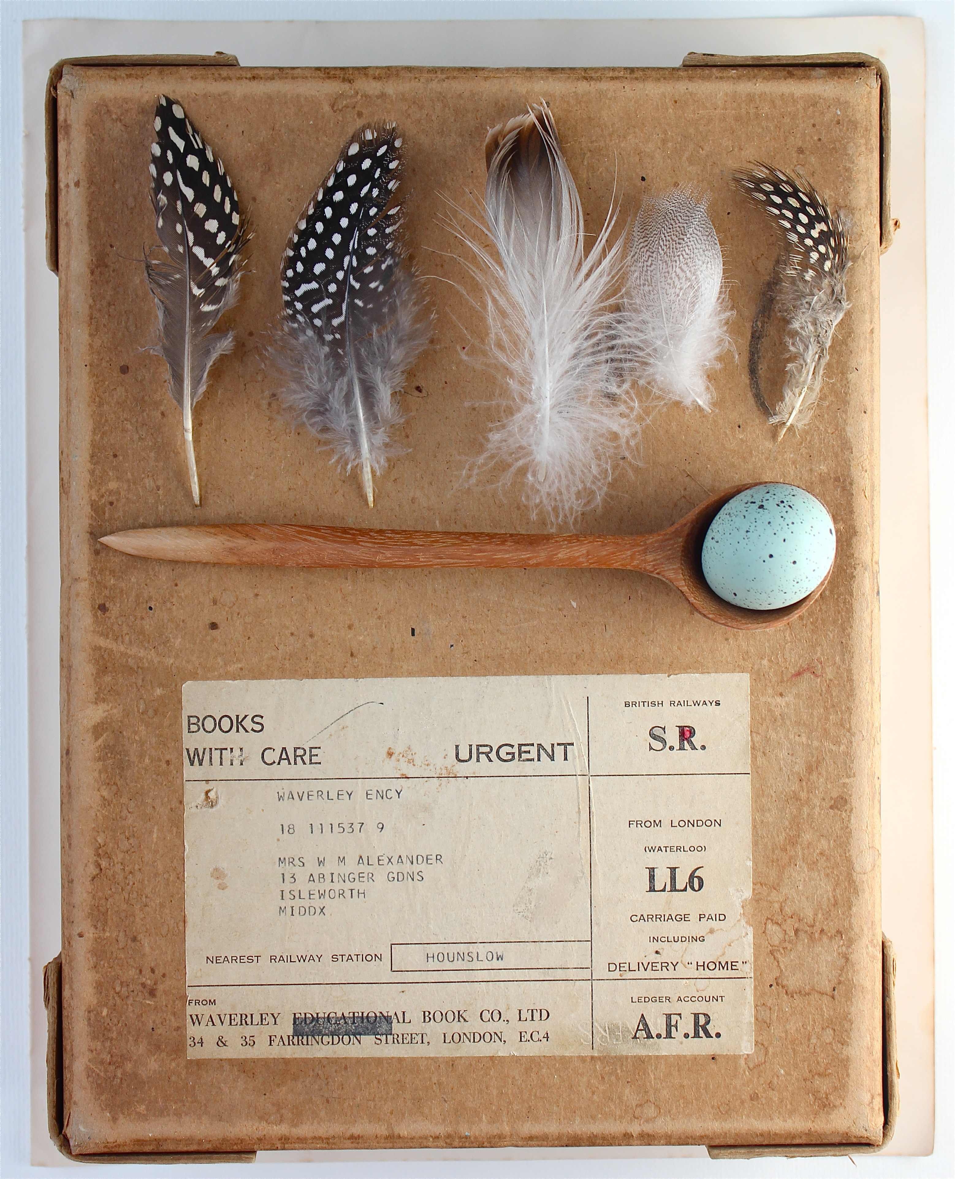 DIY feathers