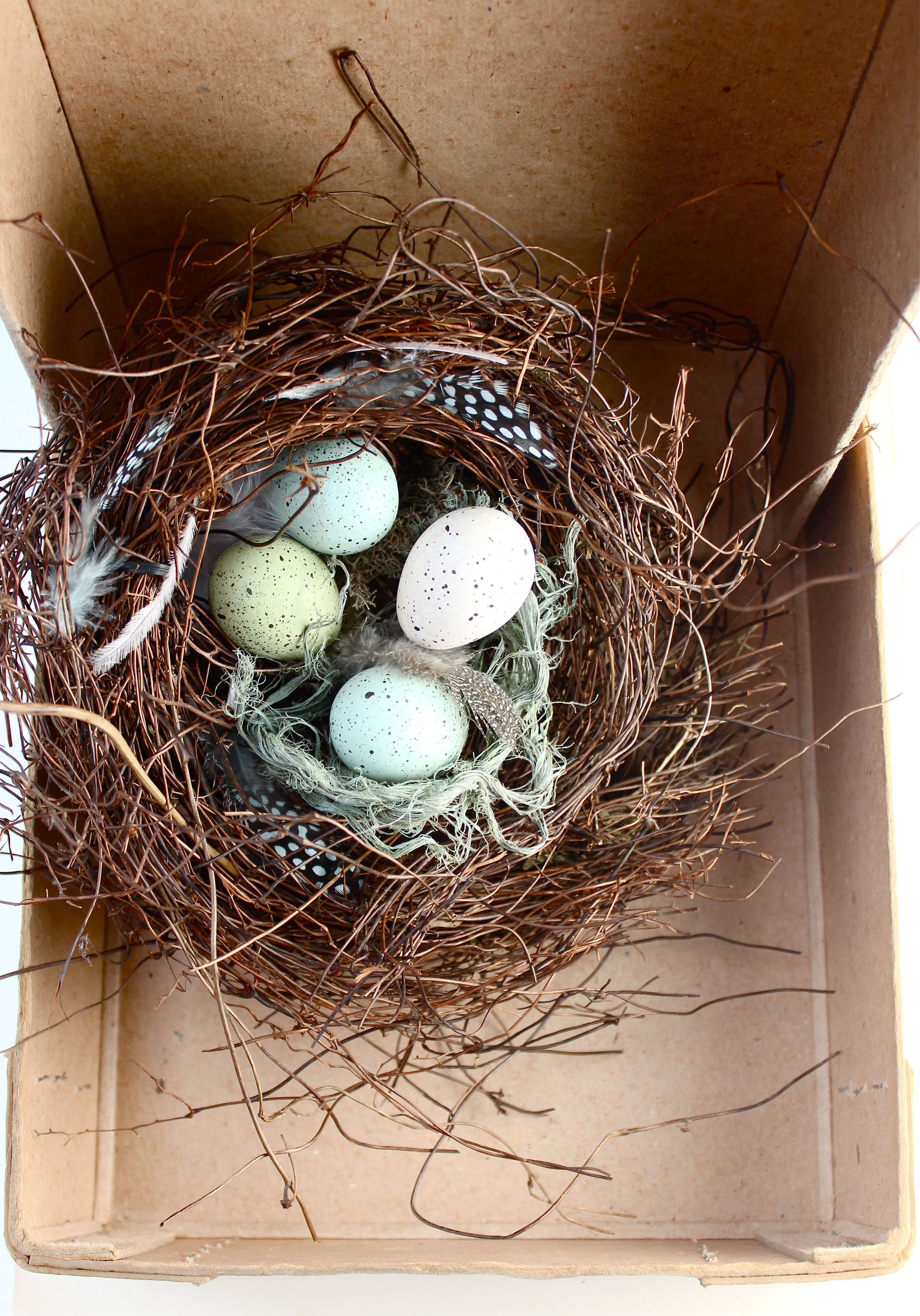speckled birds nest DIY