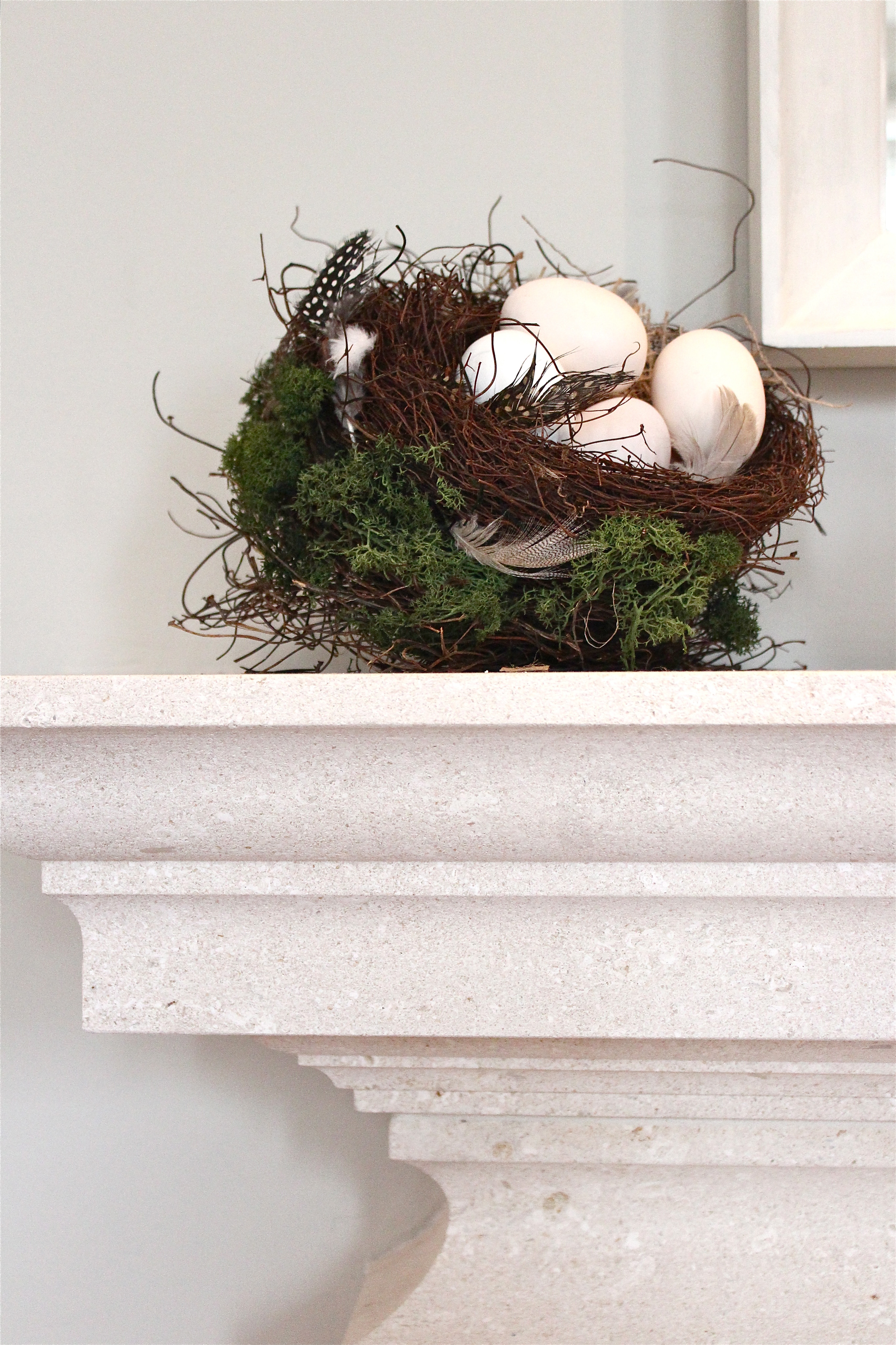 bird nest on fireplace