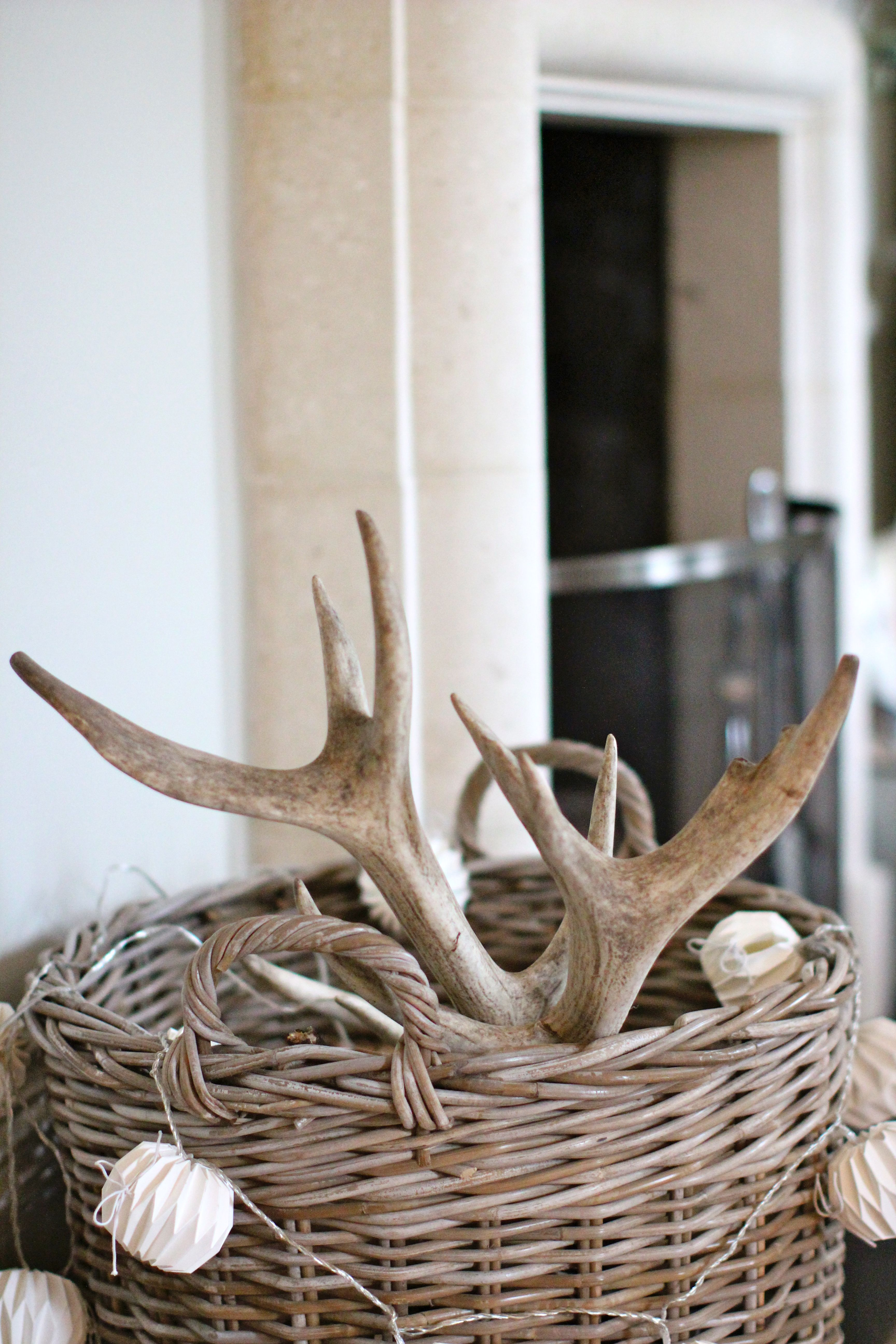 deer antlers in fireplace