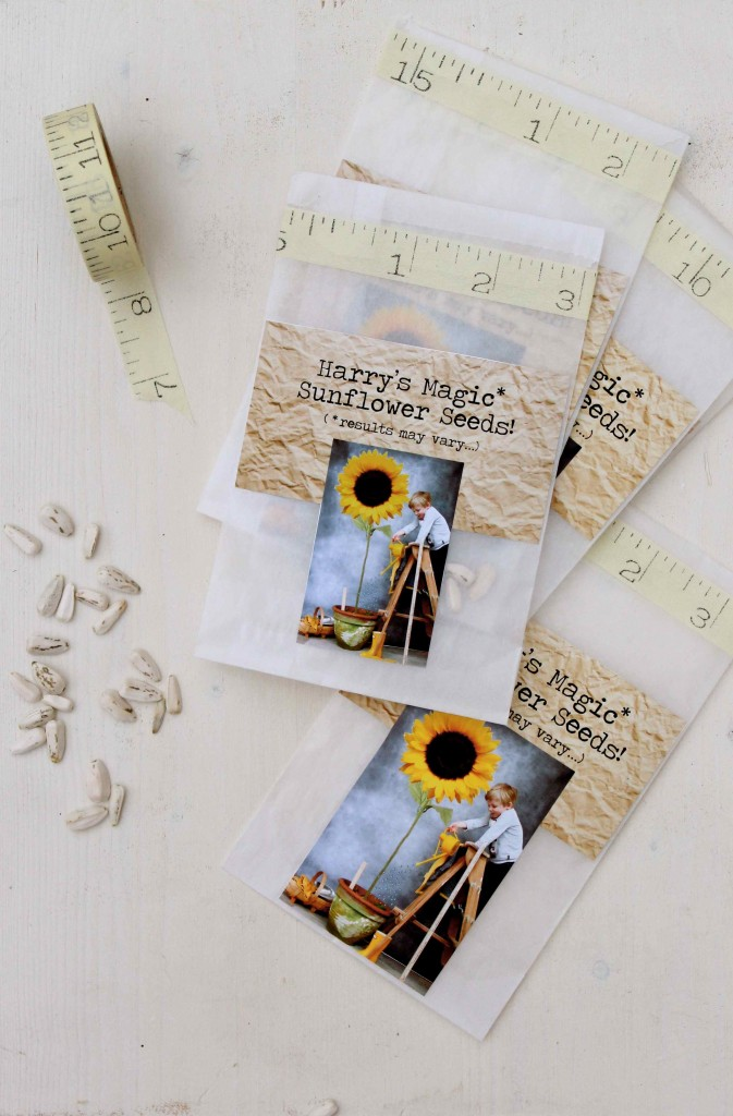 DIy Sunflower Seed Gift Packets