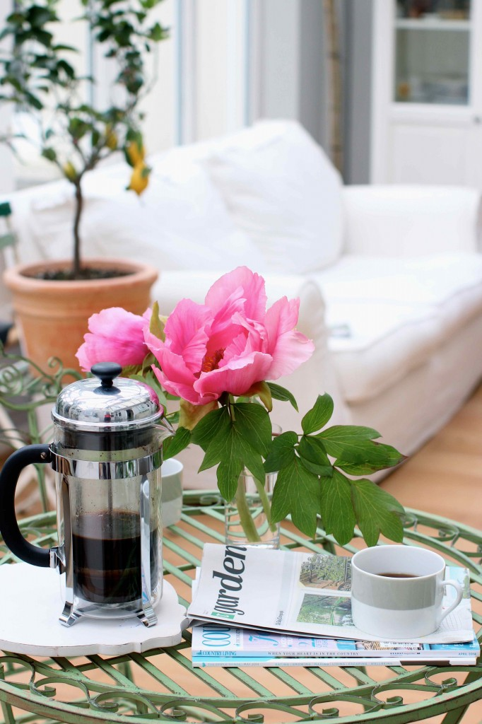 peonies and coffee in the conservatory