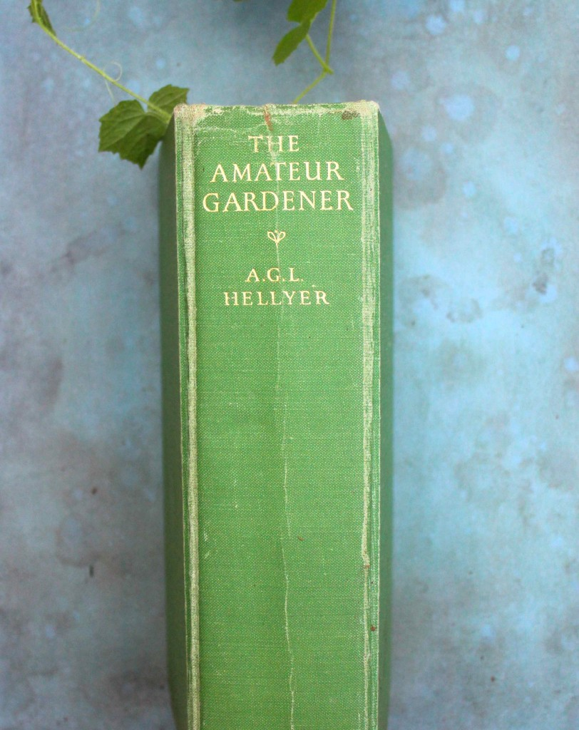the amateur gardener