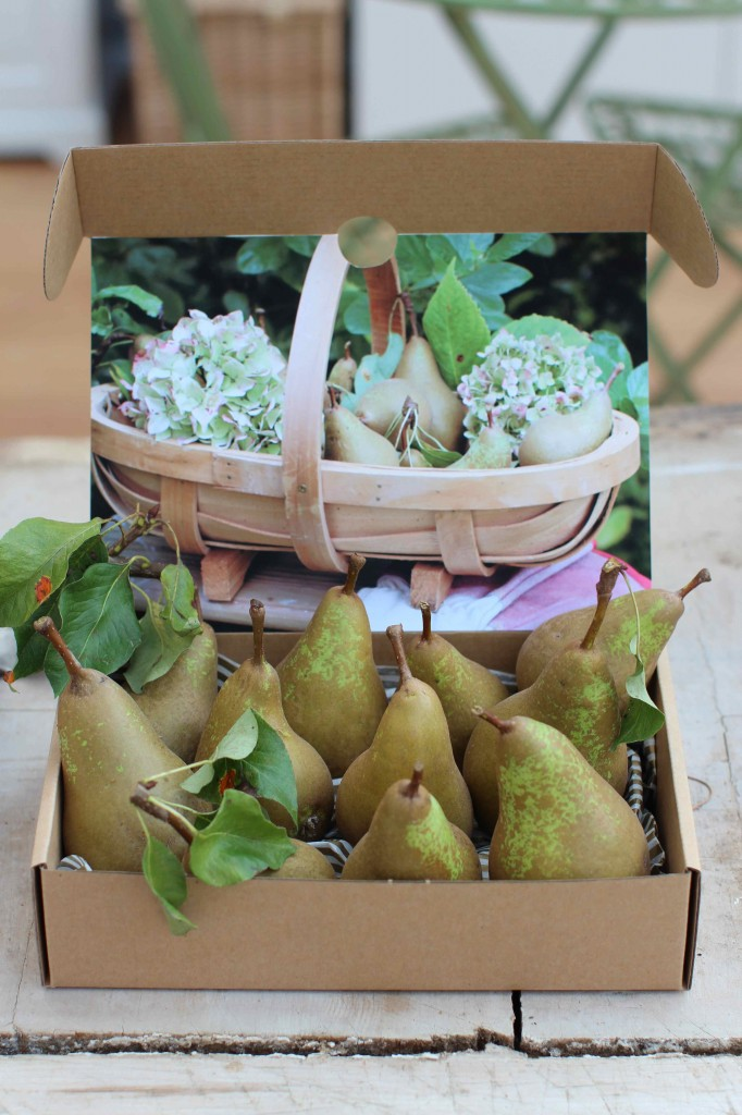a box of pears