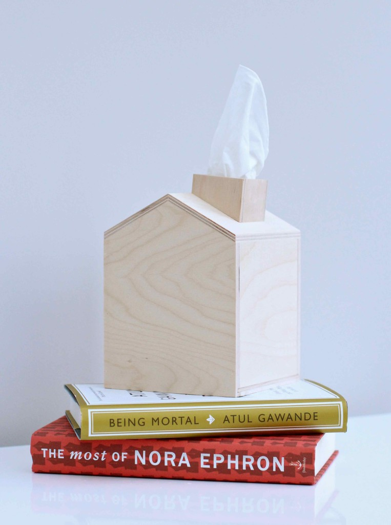 Tissue box wooden houses