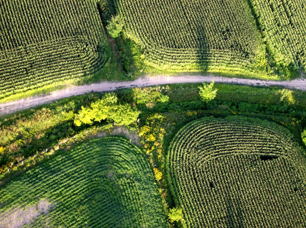 ALBUM art shot fields from the hot air balloon