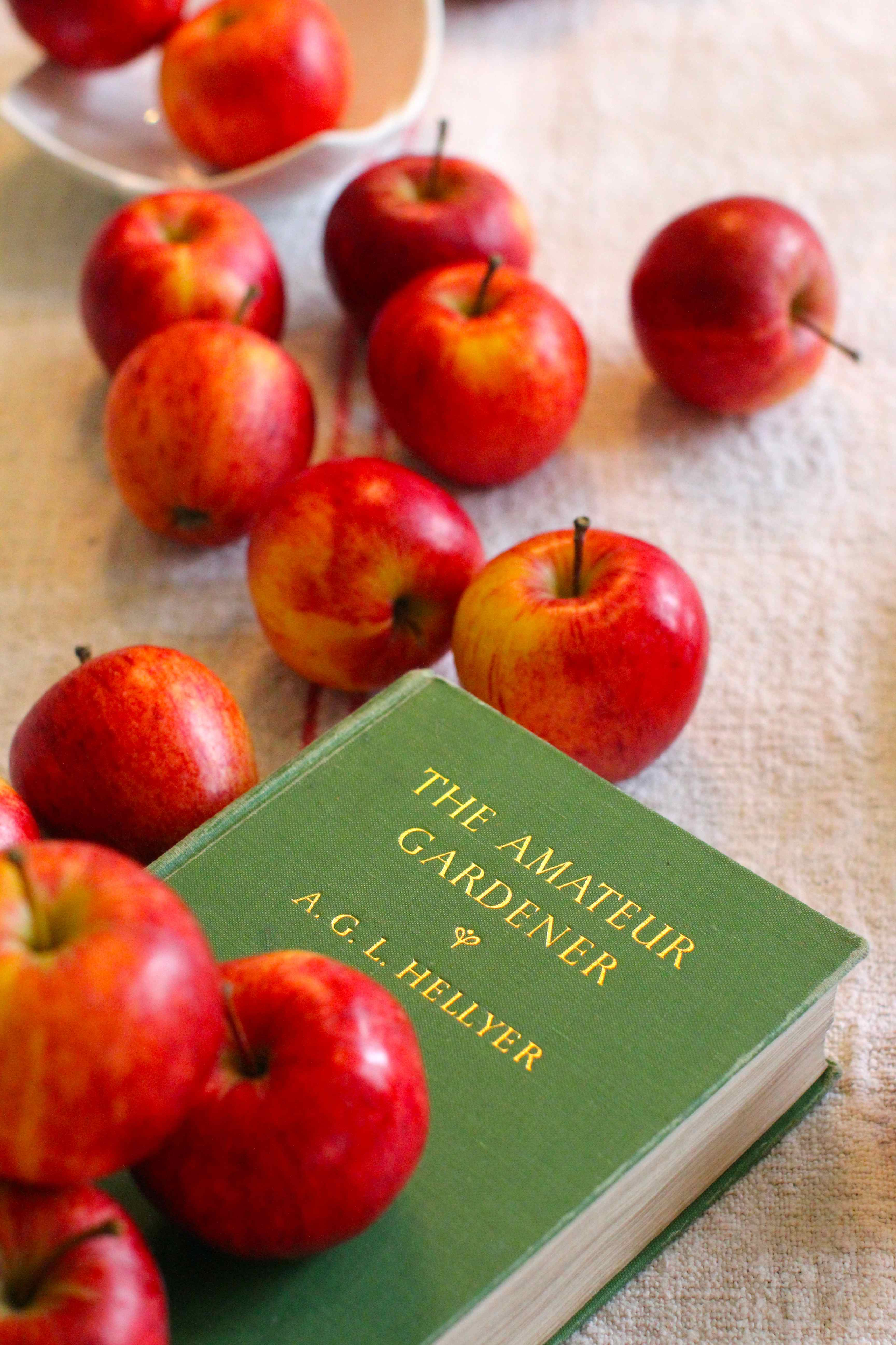 One Hundred And Twelve Red Apples