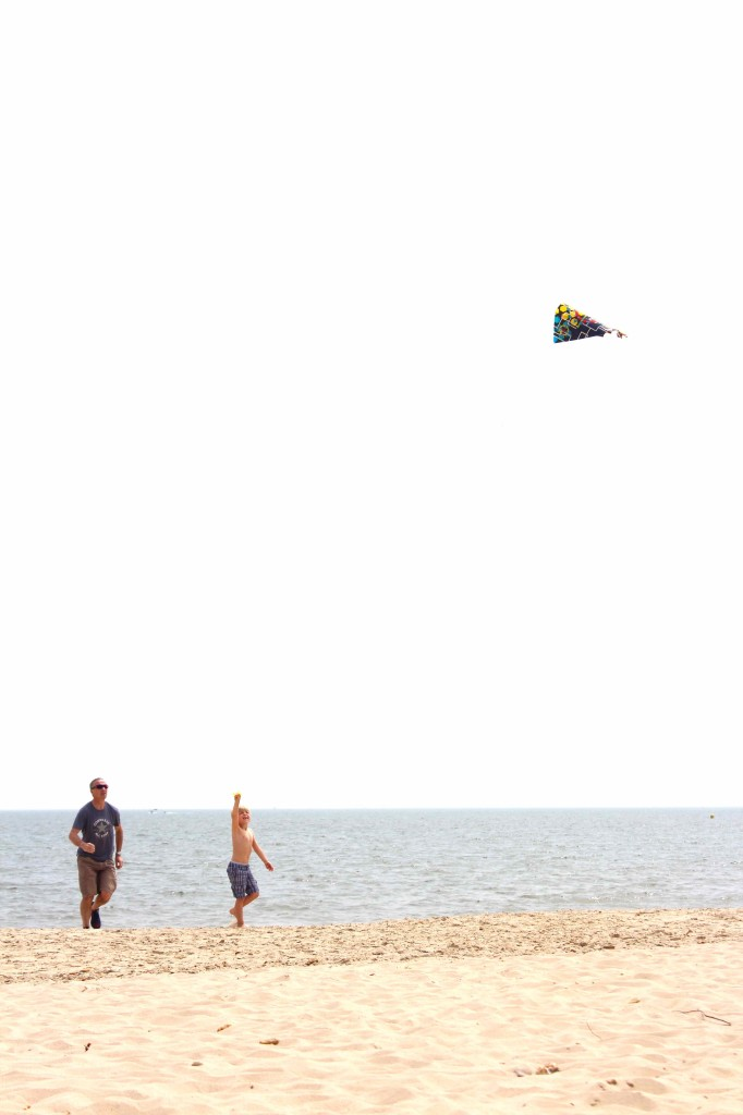 Kite fliying on the beach