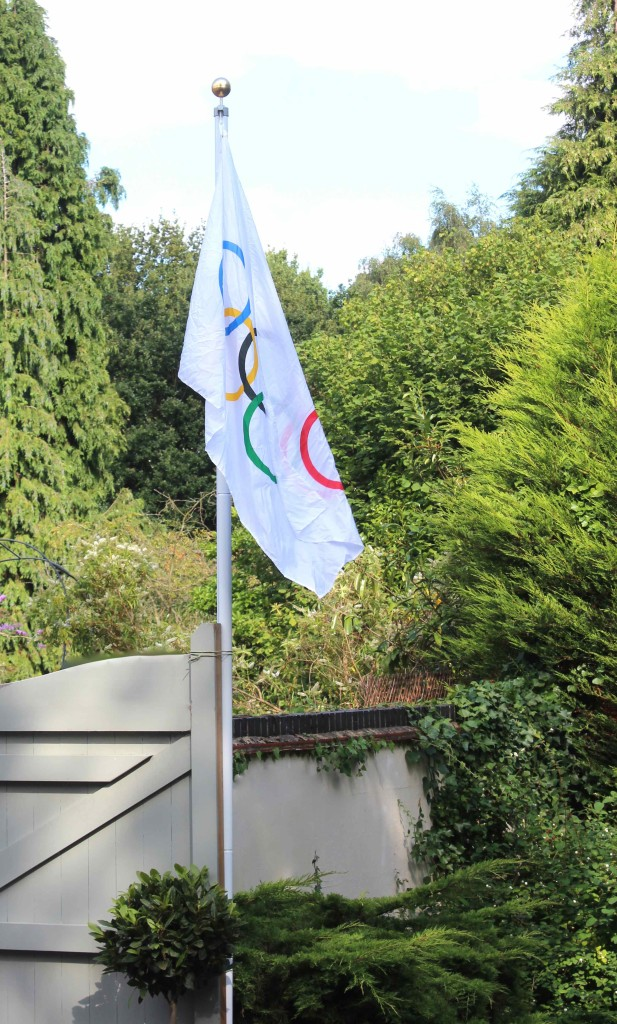 Olympic party flag